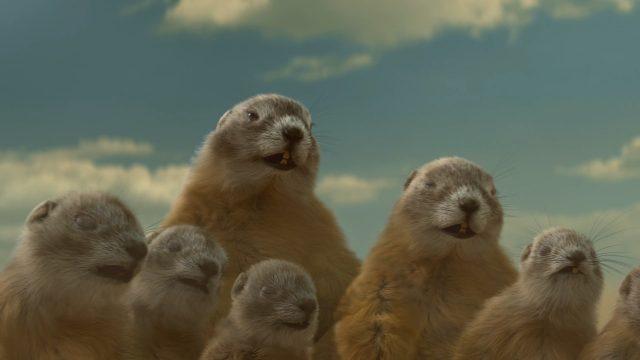 thumb-bramcoppens-chevrolet-equinoxfbi-groundhog-30s-2019-2